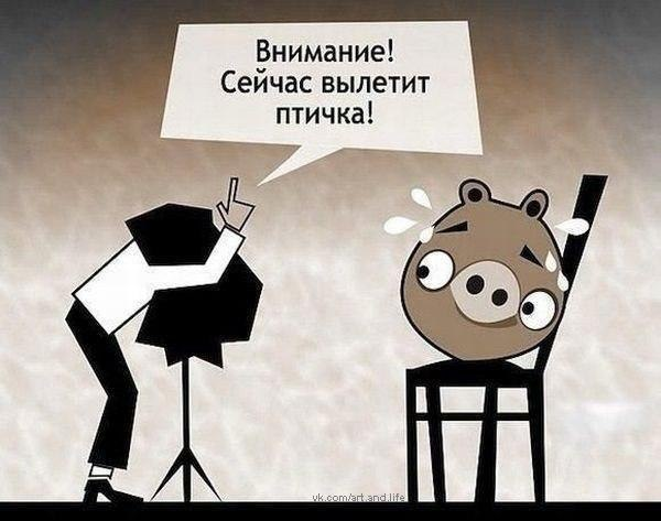 http://forum.darnet.ru/img_attach/1091.jpg