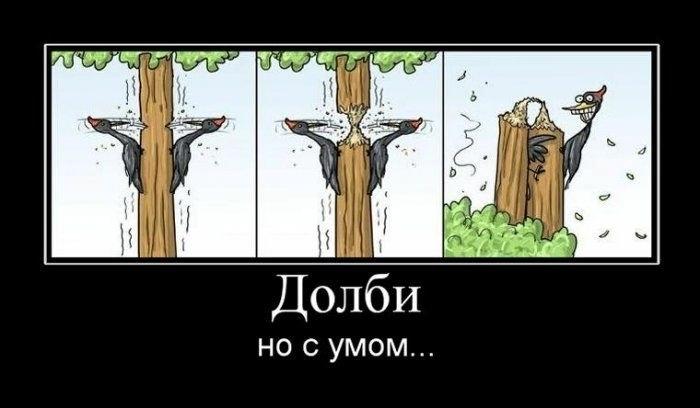 http://forum.darnet.ru/img_attach/92.jpg