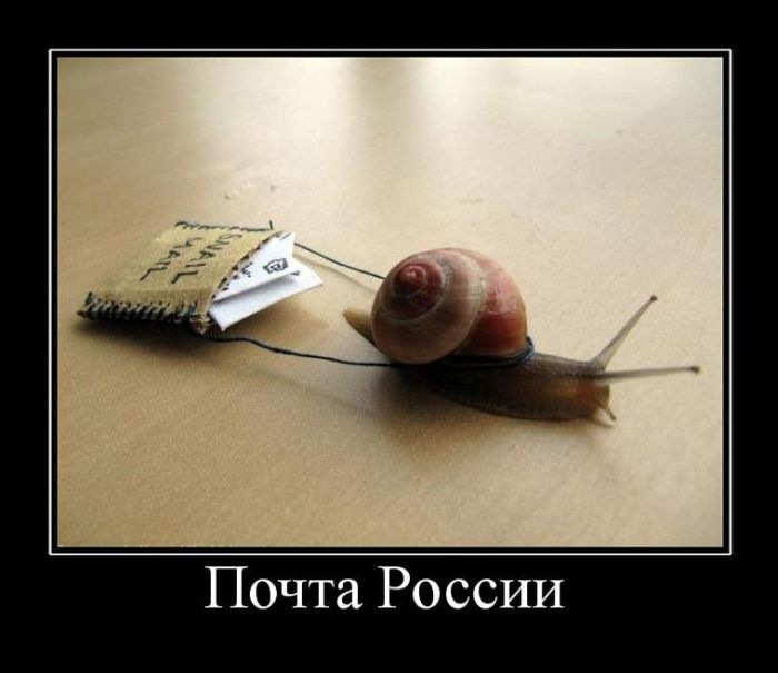 http://forum.darnet.ru/img_attach/925.jpg