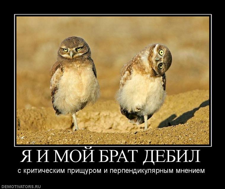 http://forum.darnet.ru/misc.php?item=244
